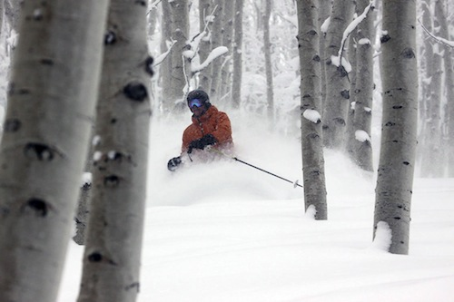 tree-skiing-in-steamboat-springs-powdercats