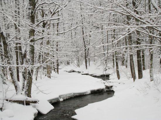First Snow, VT