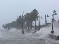 Hurricane Irma ABC News