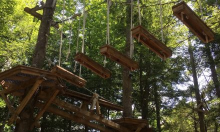 A ski resort in the summer: Okemo Mountain Resort