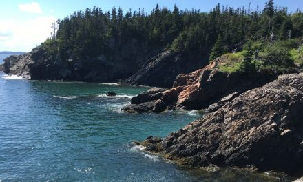 Off season trips: Exploring Campobello Island