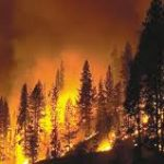 Fires are burning up ski country. Here's what we can do about it.