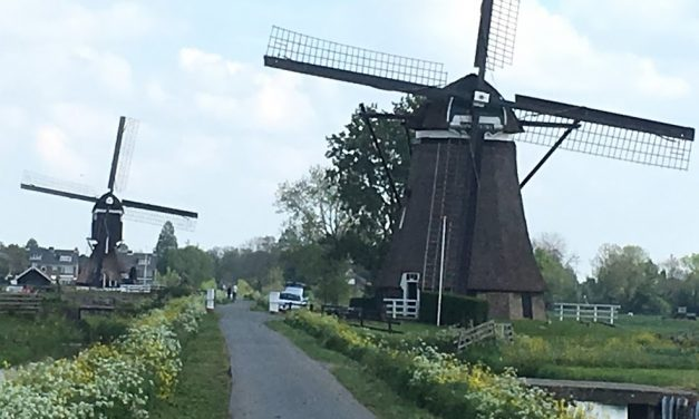 A cure for the end of ski season blues: biking through the tulips in the Netherlands.