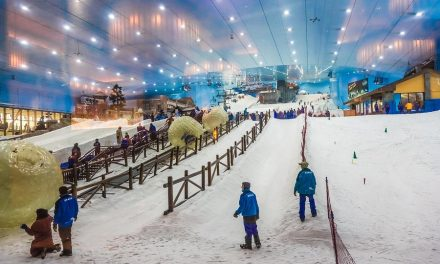 Endless Winter: Indoor skiing, synthetic slopes, and simulators.